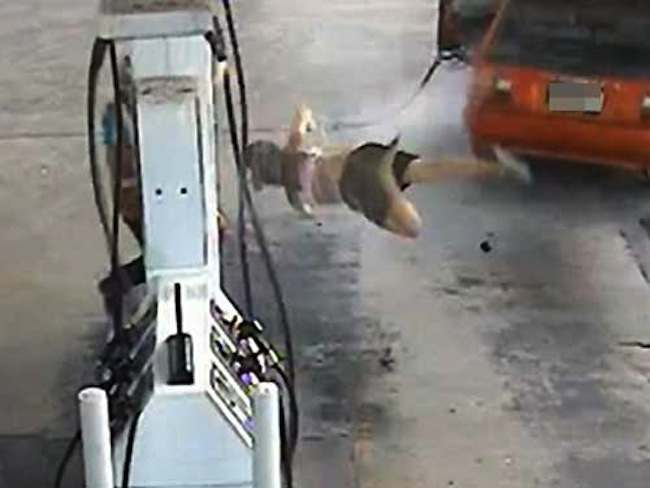 petrol woman australia Petrol thief takes off into the air (Video)