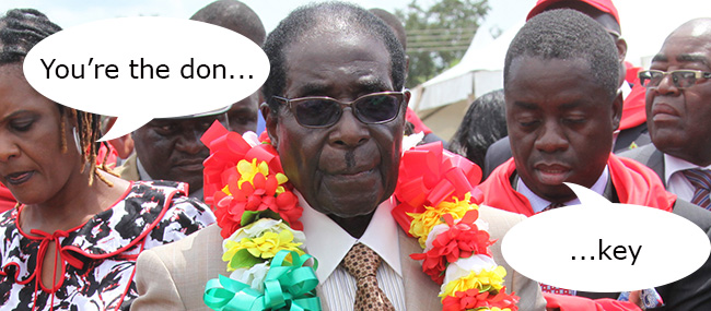 Zimbabwe Mugabe Birthday Celebrations