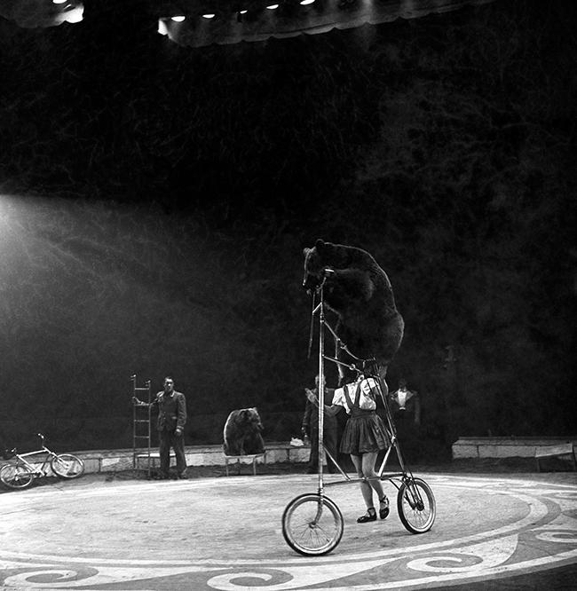 Tom Arnolds Circus