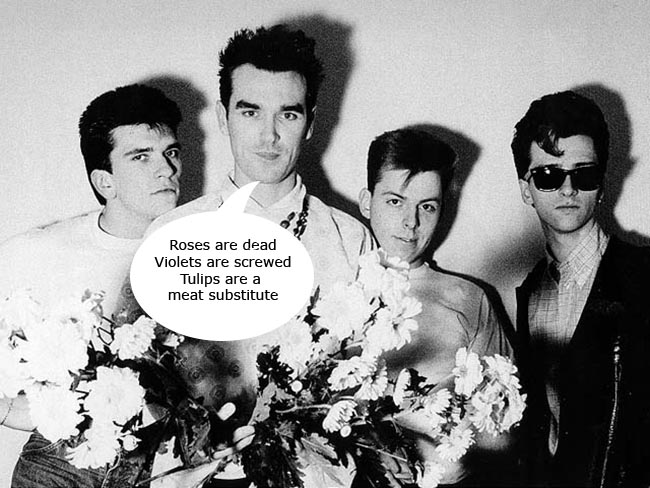 The smiths tulips copy The Smiths Girlfriend in a Coma sung to the tune of Tiptoe through the Tulips