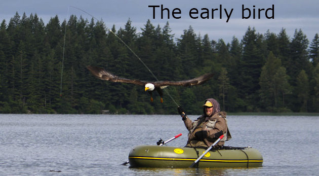 eagle fishermen copy