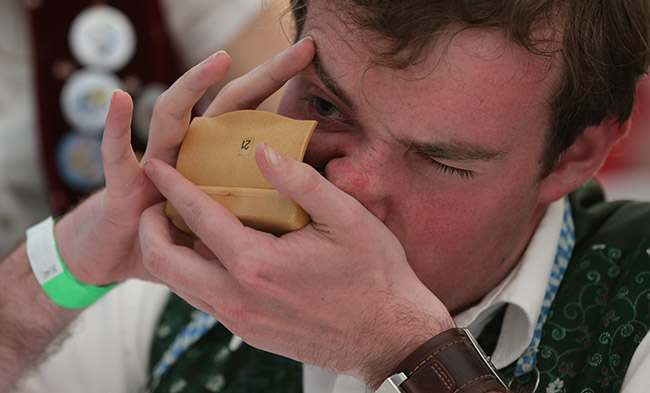 A competitor takes snuff from a snuffbox at the German Snuff Championships in Freihung near Nuremberg, southern Germany, on Saturday, June 8, 2013. The competition's aim is to snuff as much as possible from a five gram snuff package. (AP Photo/Matthias Schrader)