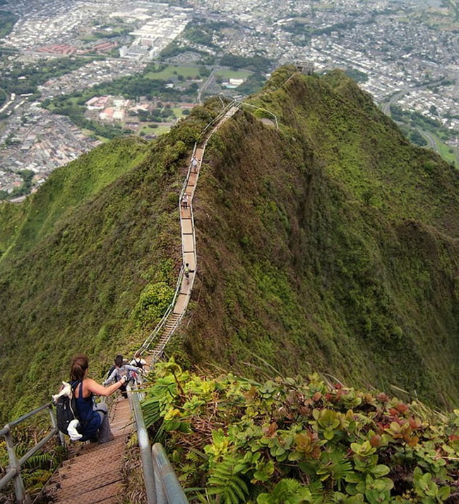 Haiku Stairs, Hawaii, USA link The Haʻikū Stairs, also known as the Stairway to Heaven or Haʻikū Ladder, is a steep hiking trail on the island of Oʻahu. link The trail began as a wooden ladder spiked to the cliff on the south side of the Haʻikū Valley. It was installed in 1942 to enable antenna cables to be strung from one side of the cliffs above Haʻikū Valley to the other. link A building to provide a continuous communication link between Wahiawā and Haʻikū Valley Naval Radio Station was constructed at the peak of Puʻukeahiakahoe, elevation about 2,800 feet (850 m). link In 2003, the stairs were repaired, costing the city $875,000. As of early 2012, land usage rights issues have not been resolved. The City and County of Honolulu has stated that there is currently no plan to open the stairs for public use, citing liability concerns. [link, map]