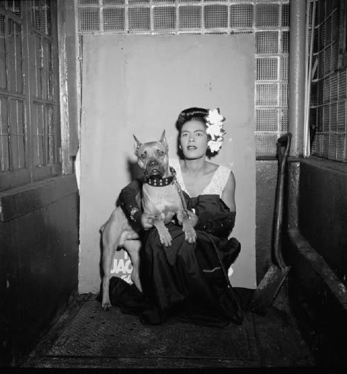 Billie Holiday crouches with her boxer Mister.