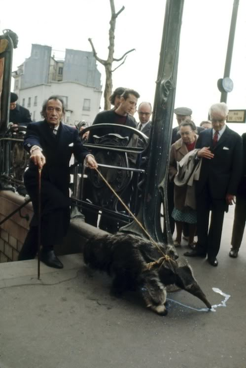 Salvador Dali takes his anteater