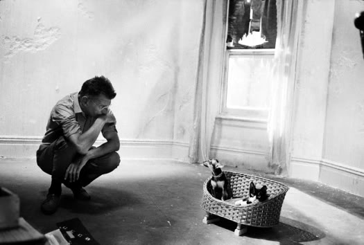 Samuel Beckett waits for the Dog and Cat
