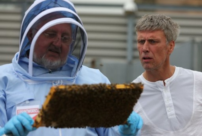 Mark Berry, aka Bez, former member of Manchester band the Happy Mondays, right, looks on as beekeeper Adrian Rhodes holds a tray of honey bees during a photocall at The Printworks in Manchester city centre.