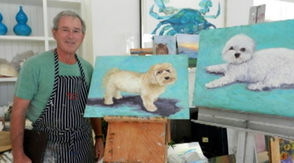 painter bush