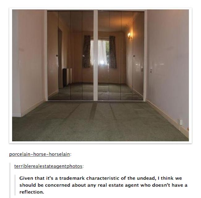 terrible estate agents photographs 4