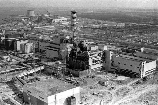 PA 2357753 Living Radiation Sponge Grows In Chernobyl