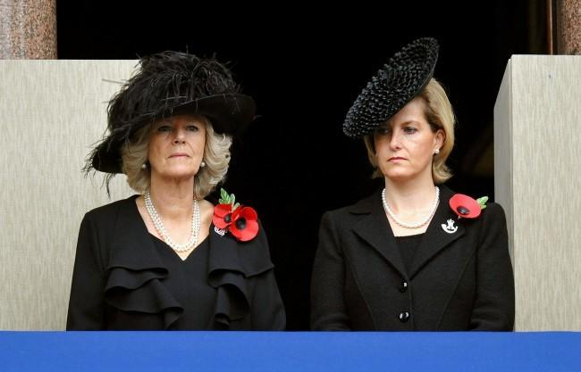 PA 6535515 The Great Royal Family Poppy Off   Who Wears The Biggest?
