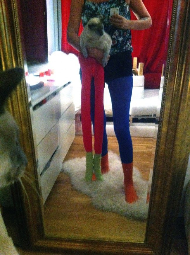 cats in tights 1