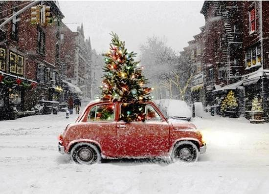 christmas tree car What Happens When Your Crash A Car Carrying A Christmas Tree (Video)