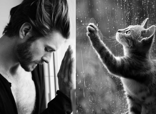 men and cats  16