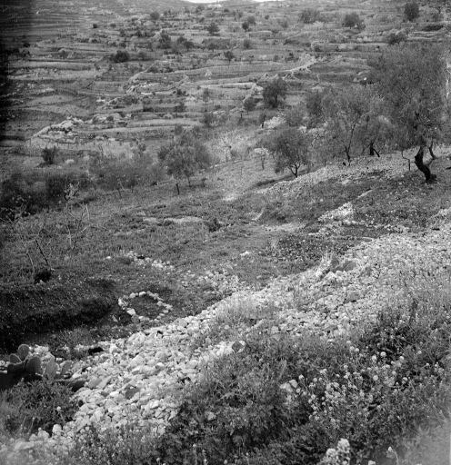 This is a mass grave used to bury 104 victims of the Deir Yassin massacre, April 1948. The round stone ring is a mass grave filled with female victims, and the square is a common grave for the men.