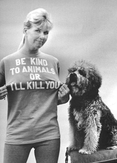 doris day A Quick Message And Death Threat From Doris Day