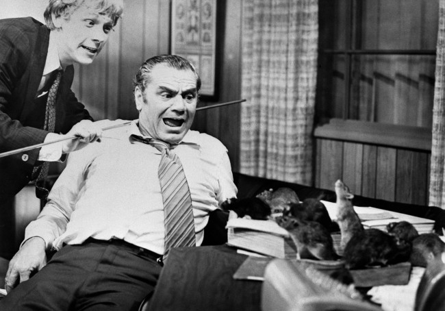 "American actors Bruce Davison (left) and Ernest Borgnine in a scene from the horror film ""Willard"""