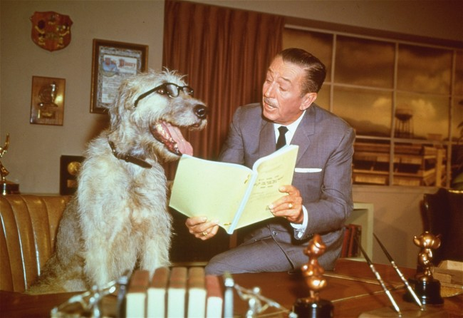 This is a December 23, 1965 photo of film animator and producer Walter Disney, in his office pretending to read a script with a dog, seated behind Disney's desk. (AP Photo)