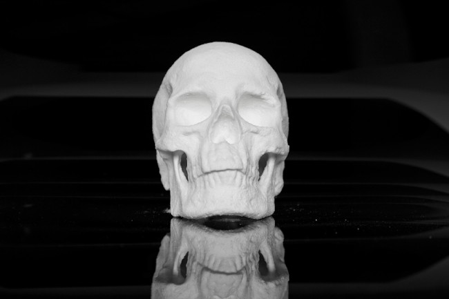 cocaine skull  Artist Diddo Makes Human Skull From Cocaine