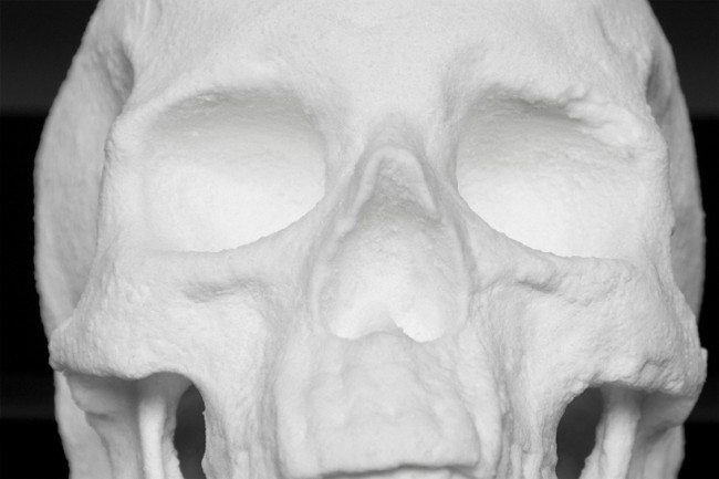 cocaine skull 2