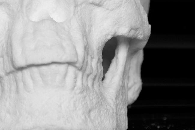 cocaine skull 6