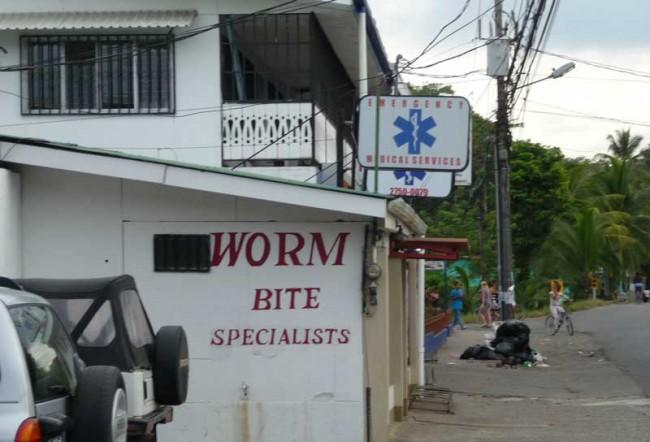 worm bite