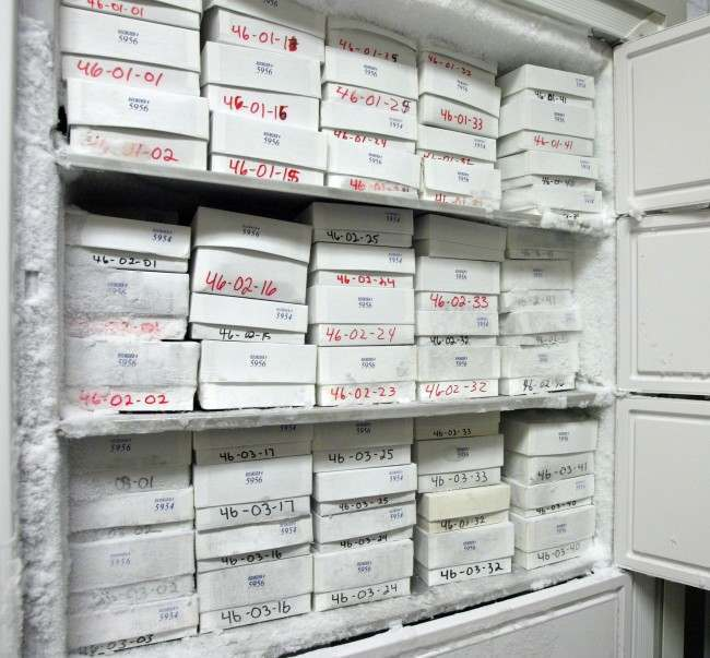 Frozen blood, serum and urine samples are shown stored in freezers at Brooks City Base in San Antonio, Texas, Wednesday, June 6, 2007. Thousands of small white boxes containing samples of blood, serum and urine are all that remain of a 25-year, $143 million program to find out if the herbicide Agent Orange made Vietnam War veterans sick.