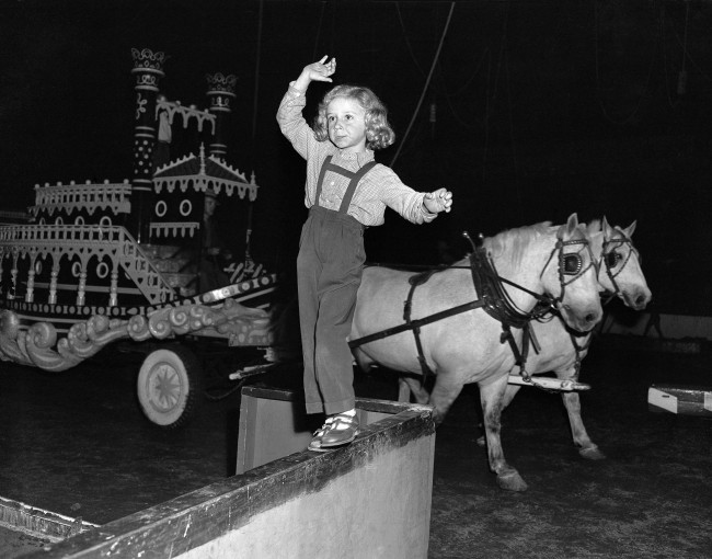 "Mr. Mistin, Jr., xylophone player billed as the ""Boy Wonder of the World,"" tries a bit of safe aerial work by balancing on a rail at Madison Square Garden, New York, during preparations for the circus opening for the 1953 season, March 31, 1953. The youngster, a five-year-old Belgian, plays both classical and popular music."
