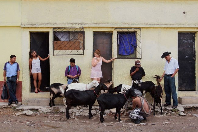 "Prostitutes buy fresh goat milk while waiting for clients outside their rented rooms on a street called in Spanish ""La Linea,"" or ""The Strip,"" where dozens of women work as prostitutes in Guatemala City, Monday, May 28, 2007."