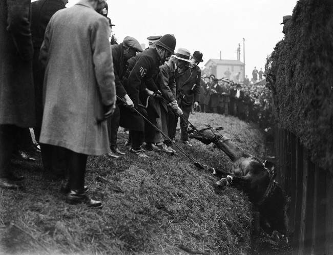 PA 9431319 1 1930 Grand National: Jockey G Goswell Is Helped To An Ambulance As His May King Flounders In The Beechers Brook Ditch