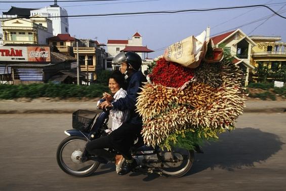 bikes of burden 2