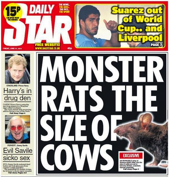cows Killer Nazi Child Eating Rats Take Over Britain:  The tale Of The Daily Stars Toothy Shockers