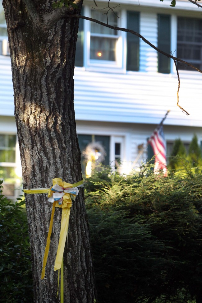 A ribbon is tied to a tree outside the home of American freelance journalist James Foley, on Tuesday Aug. 19, 2014, in Rochester, N.H