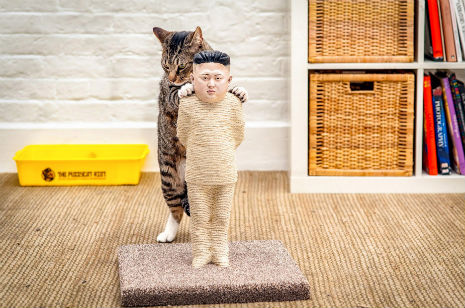dictator scratching post Pussycat Riot Rips Into Putin: Dictator Themed Litter Boxes and Scratch Posts