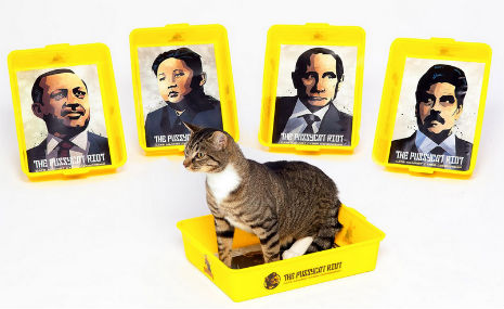pussycat riot 1 Pussycat Riot Rips Into Putin: Dictator Themed Litter Boxes and Scratch Posts