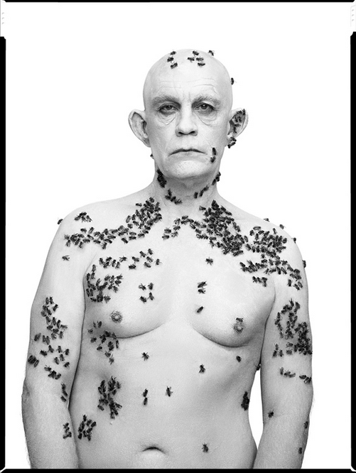 Richard Avedon / Ronald Fisher, Beekeeper, Davis, California, May 9 (1981)
