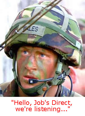 Prince Harry new job
