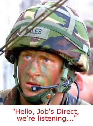 Prince Harry new job