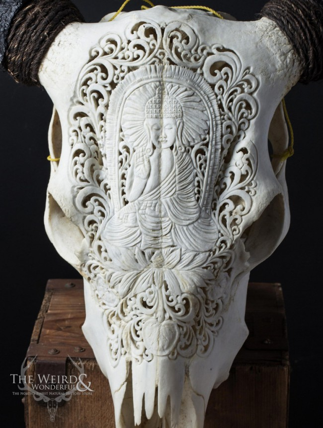 Balinese Carved Cow Skull