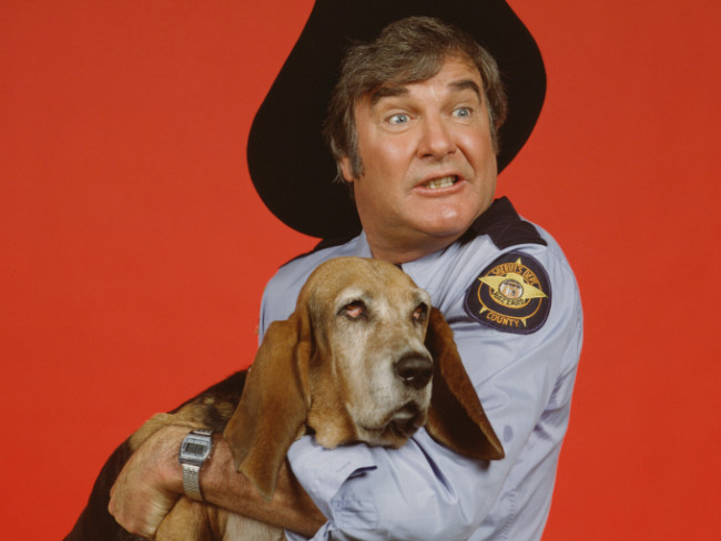 "tor James Best played Sheriff Rosco P. Coltrane, a bumbling underling of Jefferson Davis ""Boss"" Hogg, Hazzard County's corrupt county commissioner. Rosco's dog Flash was played by a basset hound named Sand"