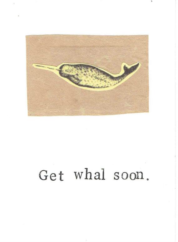 fish cards 20