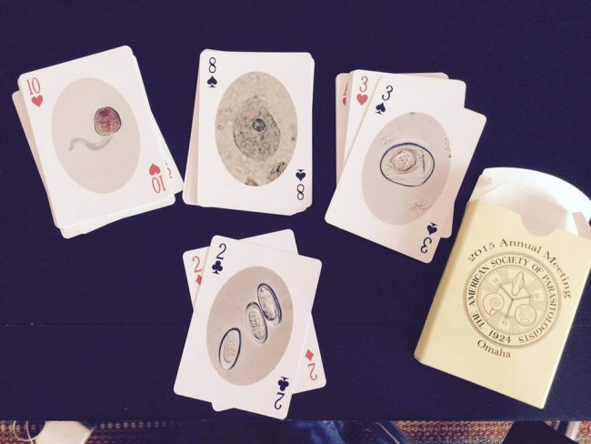 The lucky attendees at this year's meeting of the American Societe of Parasitologists got a gorgeous deck of parasite-themed playing cards into their conference bags.  Don't worry: if these ever go into wide production, I'll definitely be posting about it here.