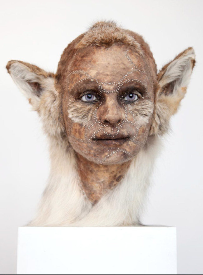 taxidermy with human faces 1