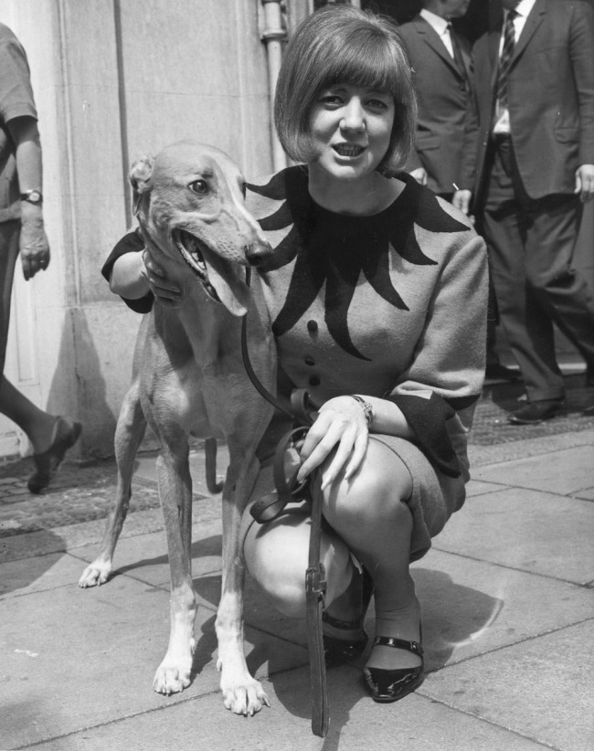 1964:  English pop singer and television entertainer Cilla Black and a greyhound called 'Ringo' at the Waldorf Hotel, Aldwych to make the draw for the first round of the national inter-track championship.  (Photo by Sydney O'Meara/Evening Standard/Getty Images)