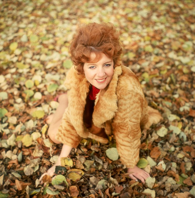 circa 1965:  Liverpudlian pop singer Cilla Black sits amidst the autumn leaves.  (Photo by Keystone/Getty Images)