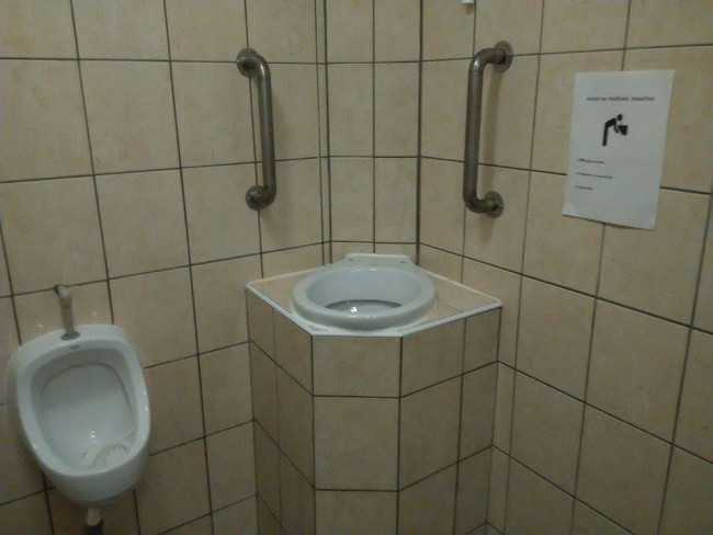 toilet puke dish