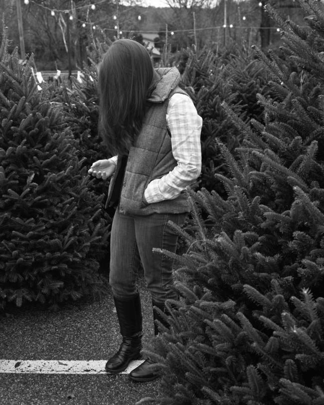 Angie_tree_shopping_1920