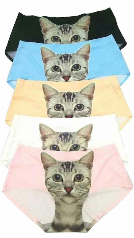pussy cat panties