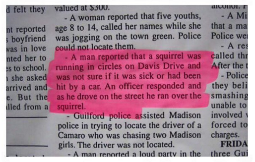 police blotter squirrel