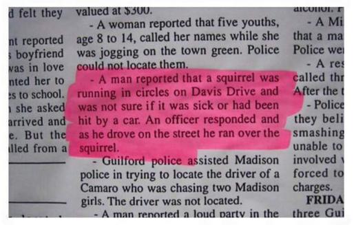 police blotter squirrel
